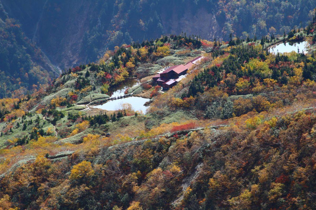 登山者を魅了する 〜日本最後の秘境〜 秋の雲ノ平の魅力に迫ります!