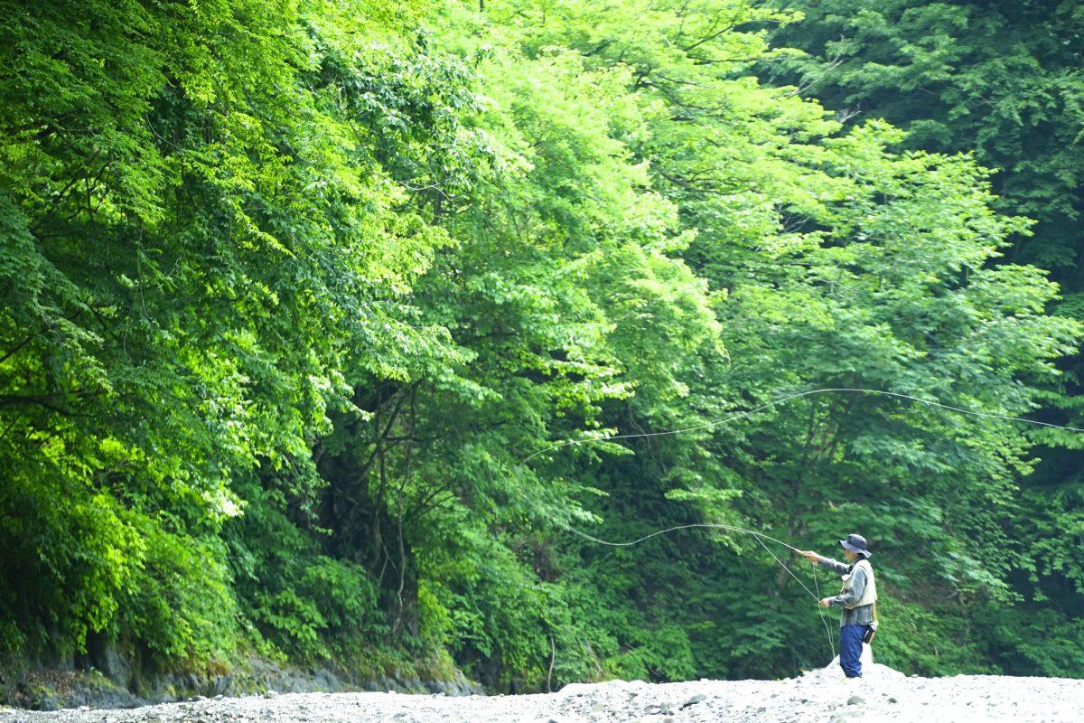 【渓流フライ入門】フライフィッシングってどんな釣り?奥深い魅力を分かりやすく解説します!