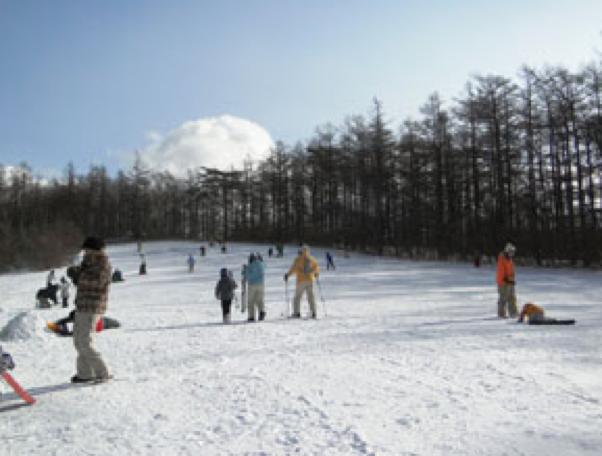 ファミリー向けスキー場 東北エリア