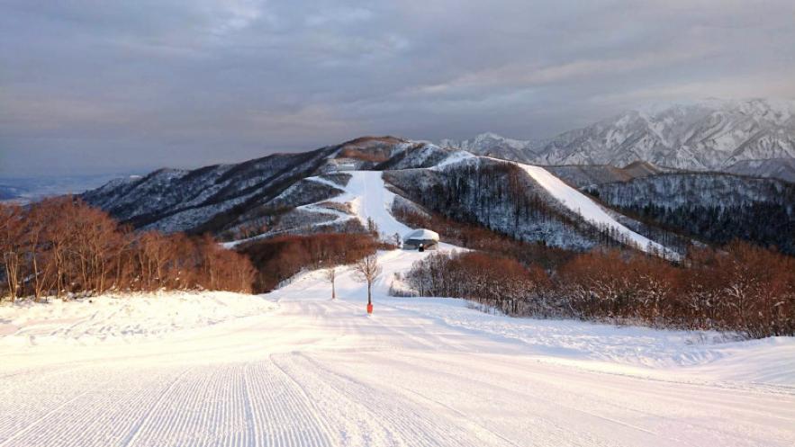 新潟 ファミリー向けスキー場