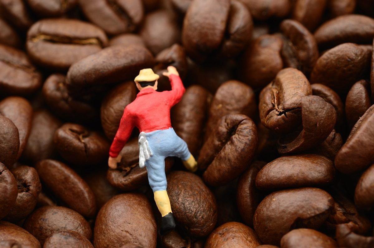登山やキャンプ♪アウトドアシーンでコーヒーを楽しむために用意したい道具って?