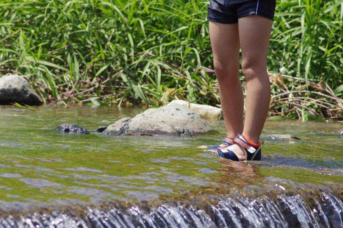 川遊び 注意点