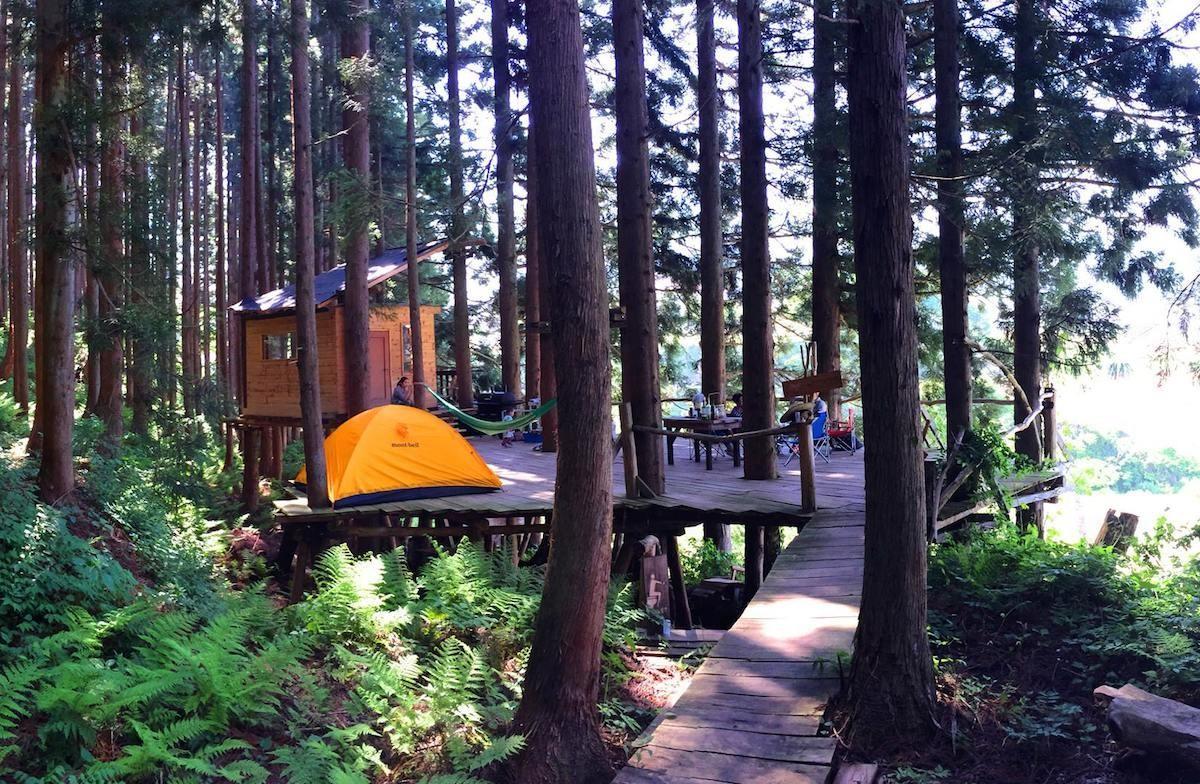 キャンプ(ツリーハウス 空中テント)