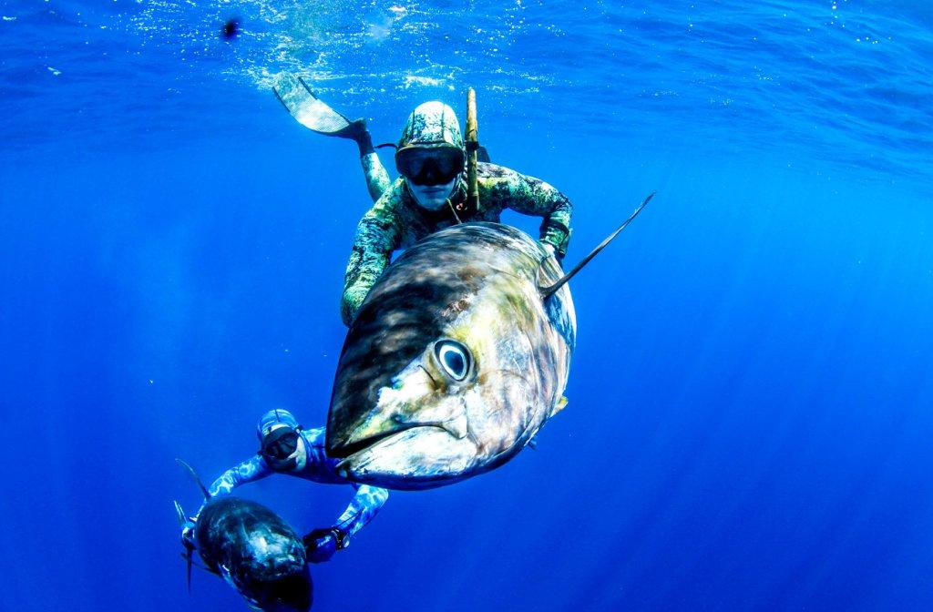 スピアフィッシング〜自然と命と向き合う『魚突き』の世界〜