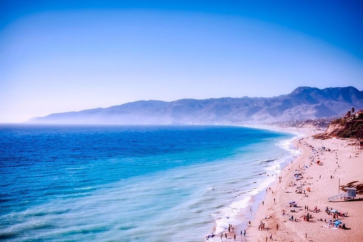 カリフォルニアビーチ 環境保全 サーフライダー