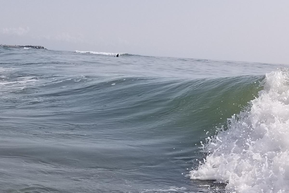 レギュラー視界 サーフィン初心者 テイクオフ