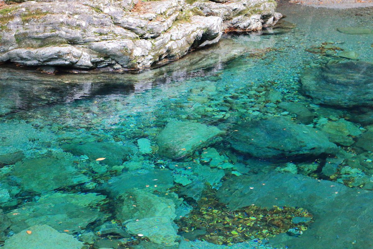 【仁淀ブルーの季節がやってきた】秋の仁淀川を満喫しよう♪
