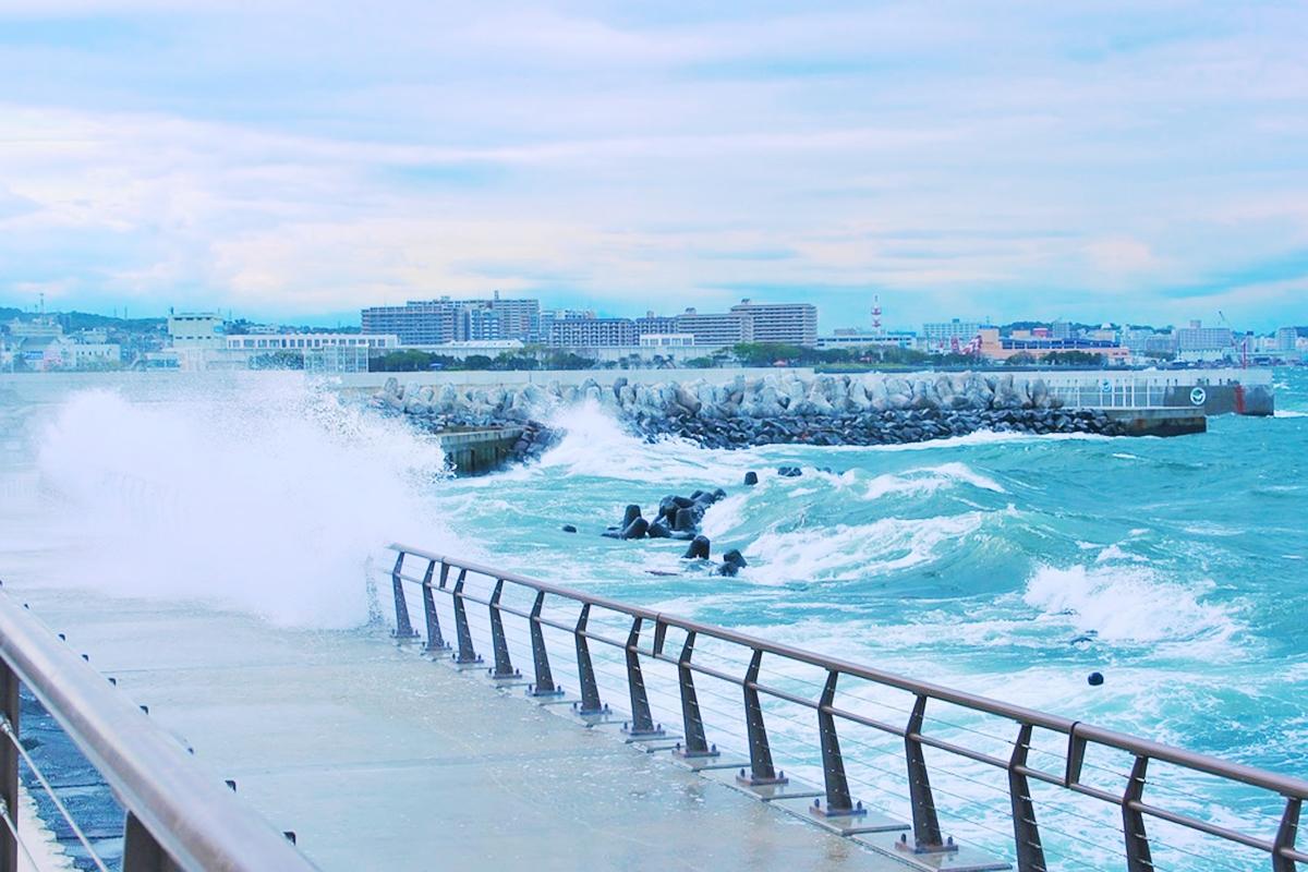 高潮被害 日本の海 環境破壊