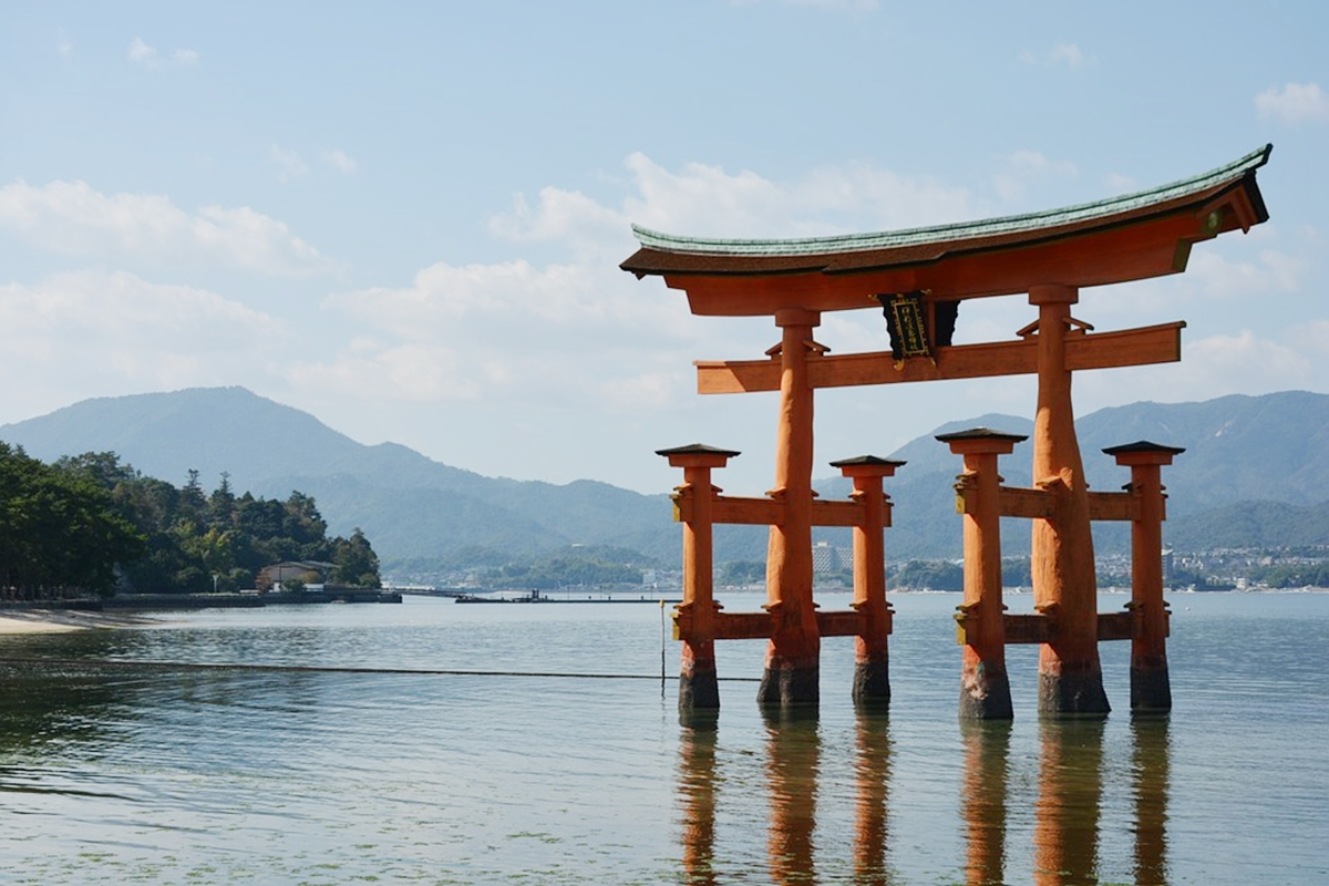 日本の海 環境破壊