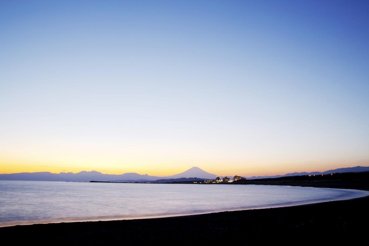 神奈川 日本の海 環境破壊