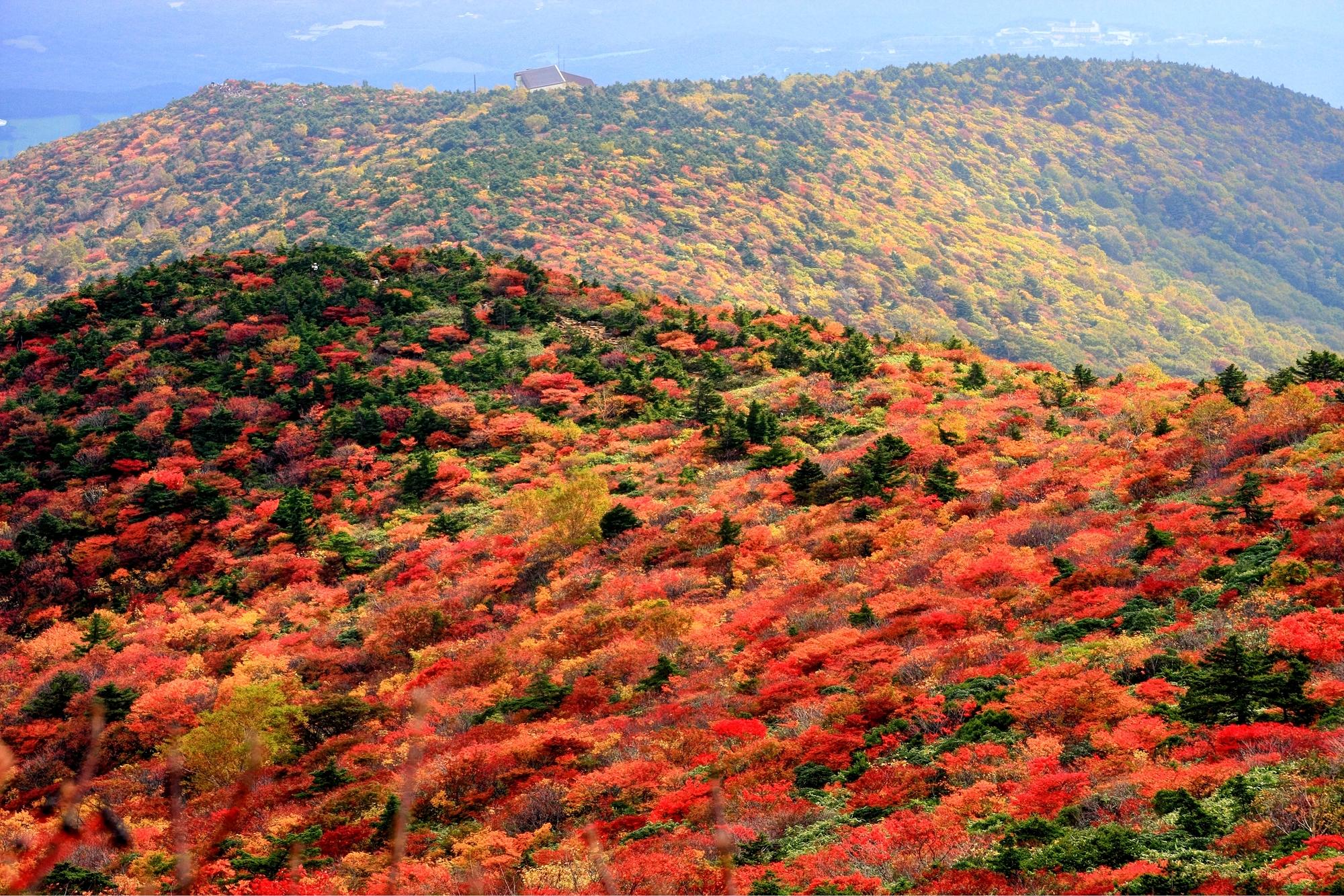 秋爛漫♪登山と一緒に温泉へ!秘湯と秋山が楽しめるオススメの紅葉登山スポットをご紹介!