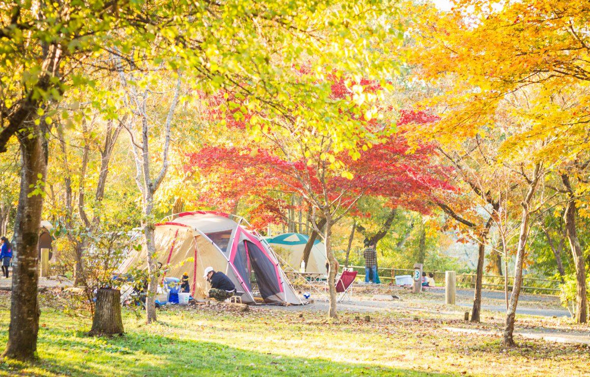 秋冬キャンプの服装