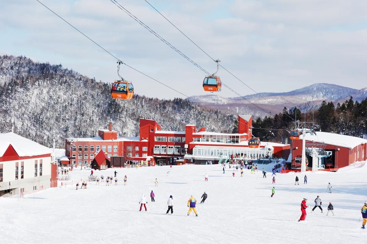 ファミリー スノーリゾート・スキー産業