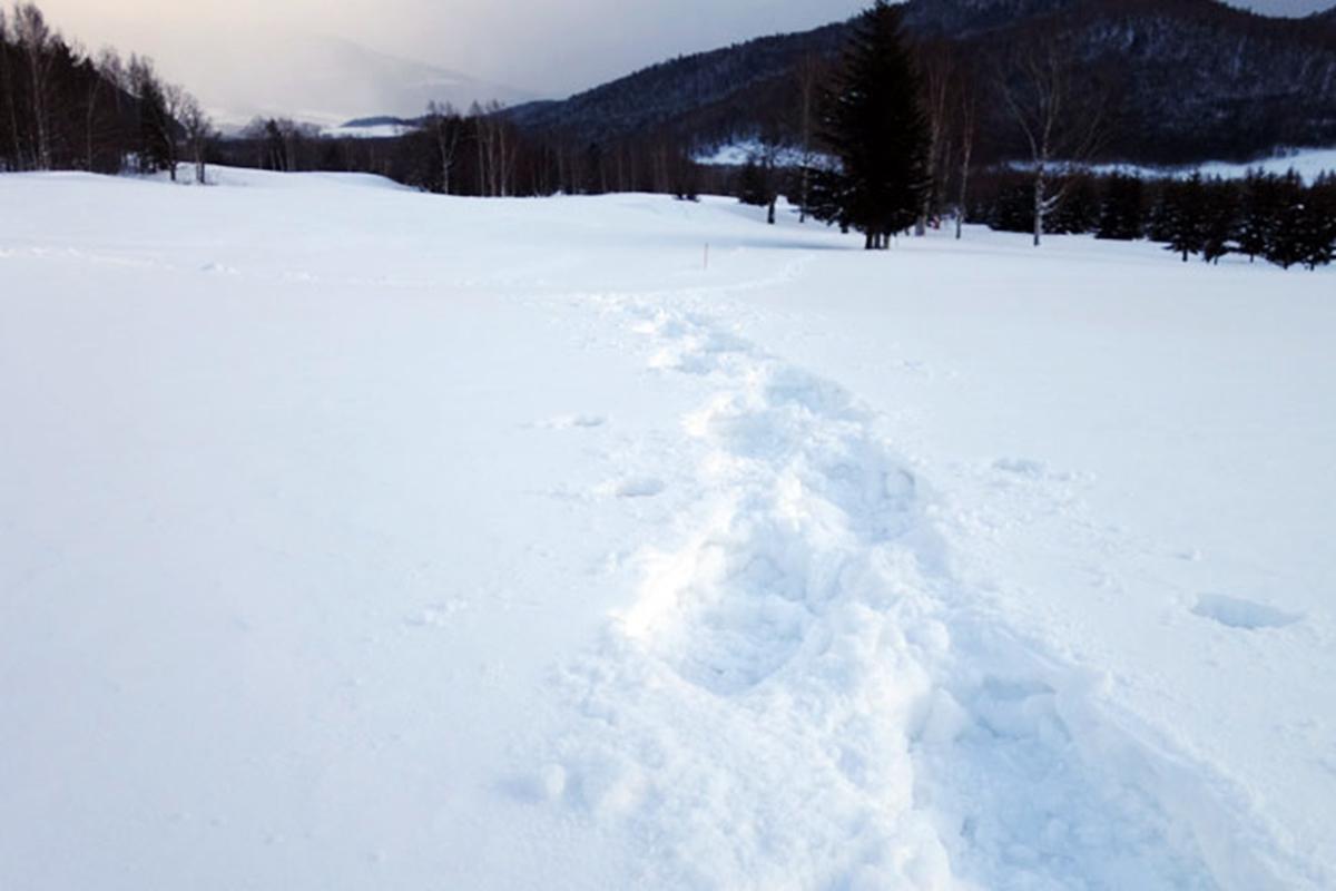 イベント 雪山登山ツアー
