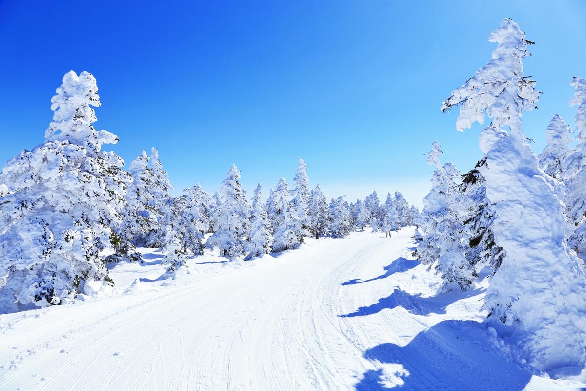 コース スノーリゾート・スキー産業