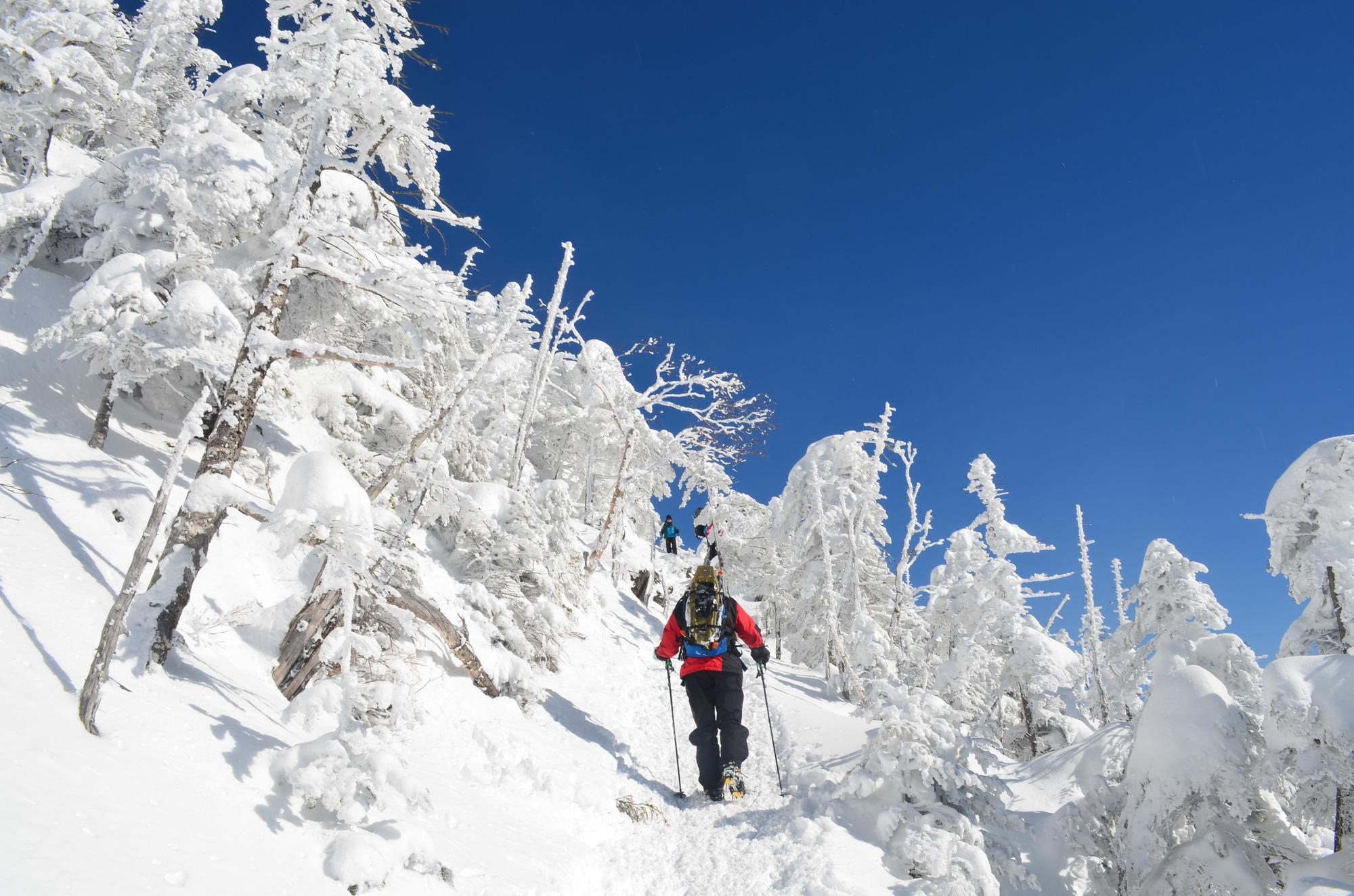 冬こそ低山!真冬のスノーハイクをスノーシューで楽しもう♪