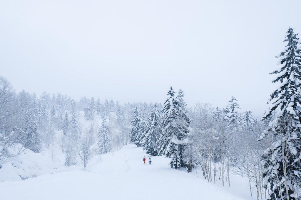 真冬のスノーハイクをスノーシュー