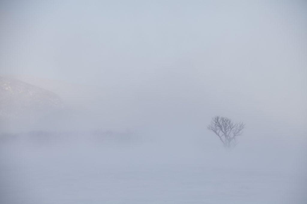 スノーハイク スノーシュー