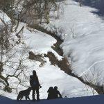 ネイチャーウォーキング♪スノーシューでアニマルトラッキング!?雪原の足跡が教えてくれる大自然♪