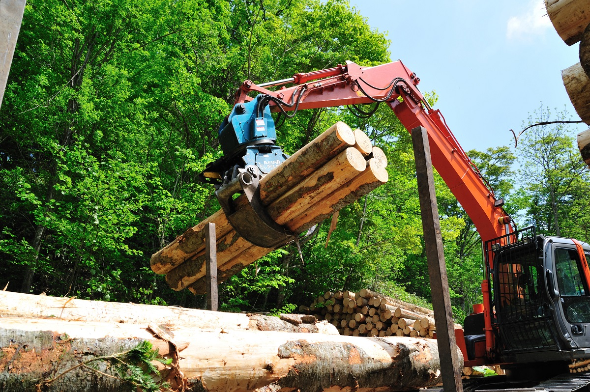 林業従事者