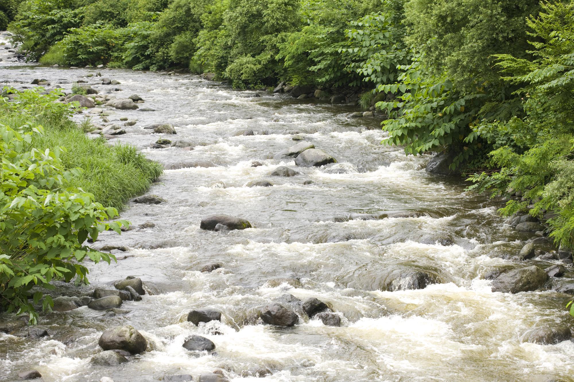 渓流釣りの危険と安全