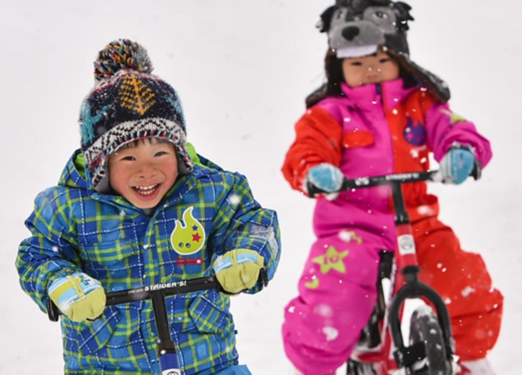 【ハマるキッズ続出!】人気のスノーストライダーが楽しめるスキー場~北海道・東北編