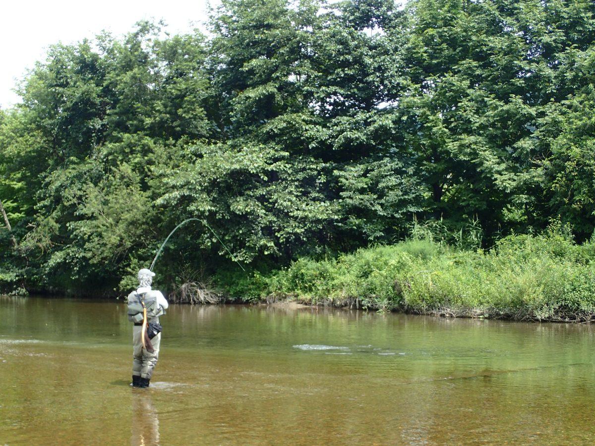 【これからはじめる渓流釣り】渓流用ウェーダーの選び方と予算別おすすめウェーダー