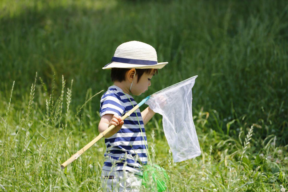 初夏のアウトドアを安全に楽しむために!自然に潜む要注意生物の特徴と対策をおさらい