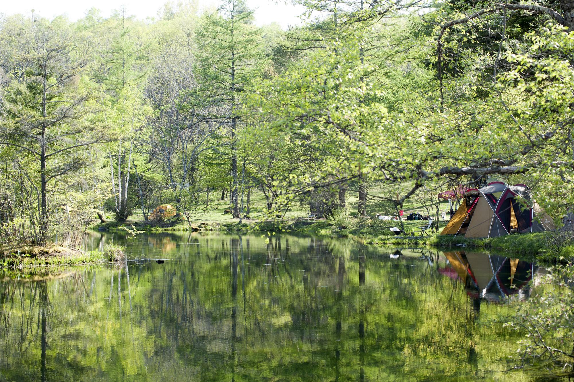 サステナブルなキャンプってなんだ?環境に優しいエコロジーなキャンプアイテムを紹介♪