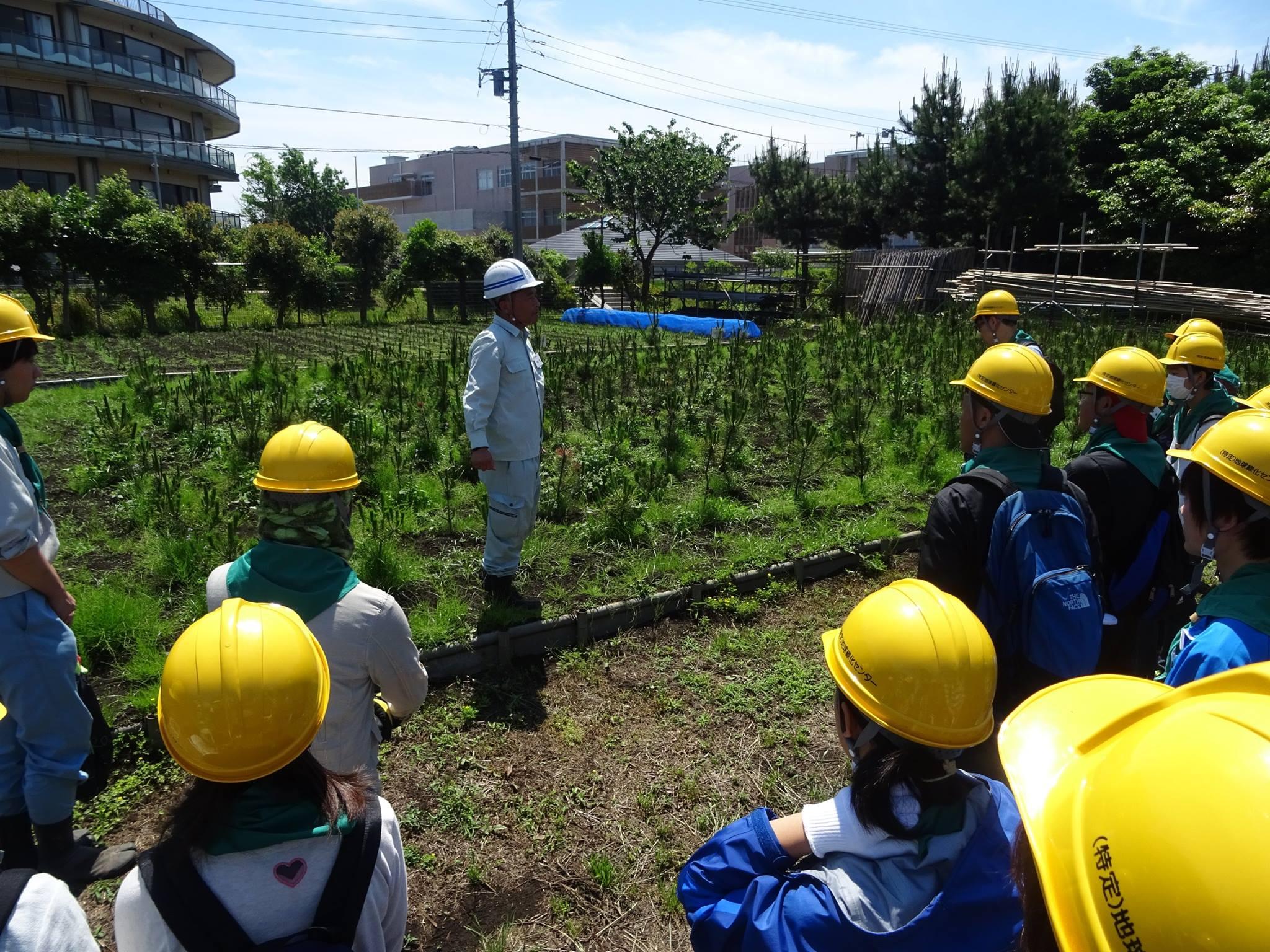 地球緑化センター