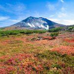 いつか登ってみたいと考えている方へ!北海道の山を登るときに気をつけて欲しいこと