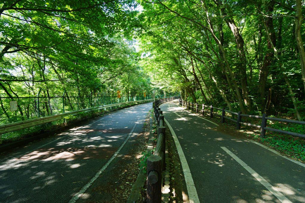 東京でサイクリング