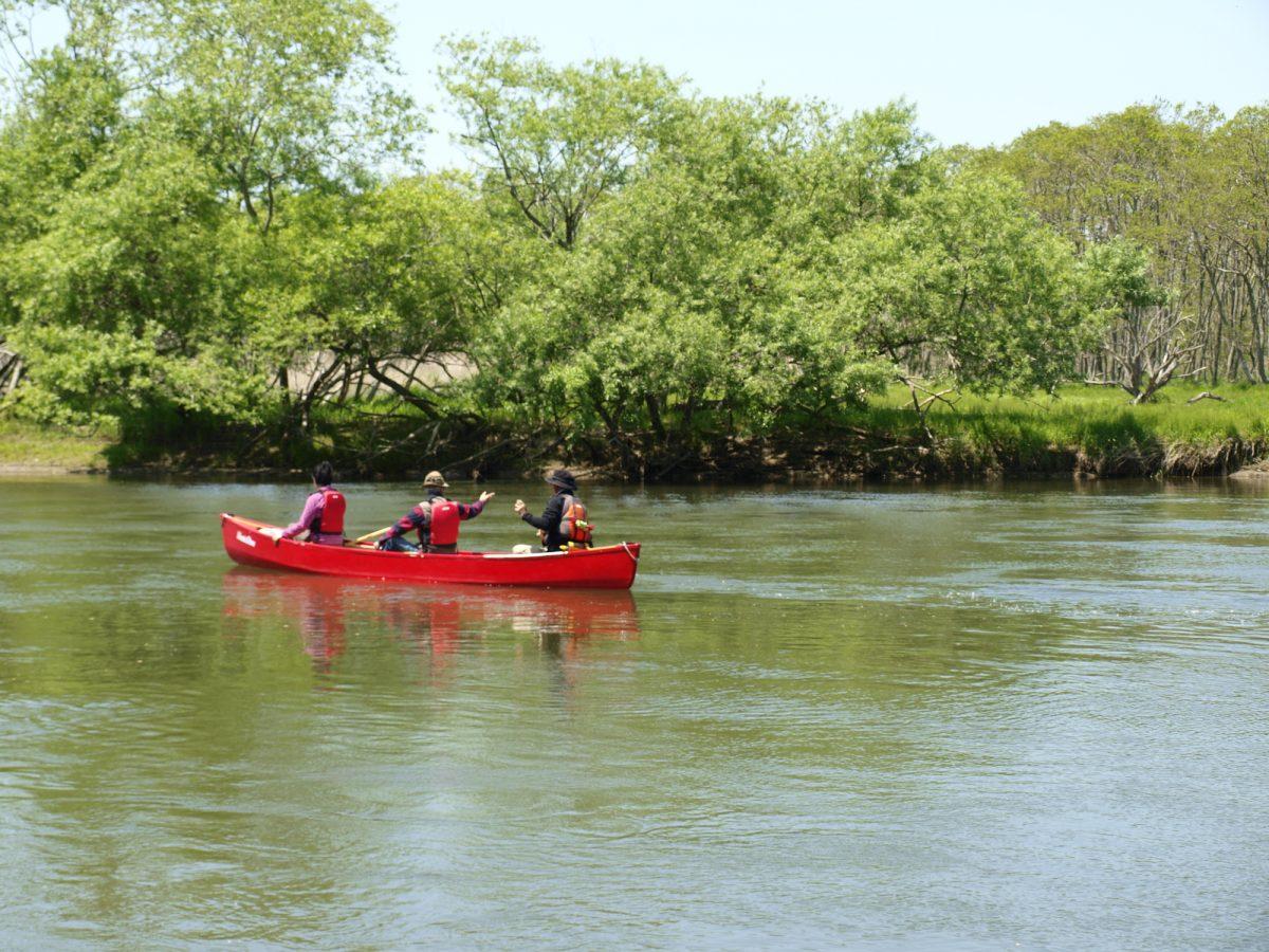 北海道の大河をカヌーでゆったりと満喫しませんか?オススメカヌースポット&ツアー3選!