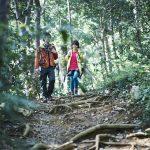 夏から秋にかけて安全にアウトドアを楽しむために! キャンプやハイキングで遭遇する要注意生物の特徴と対策