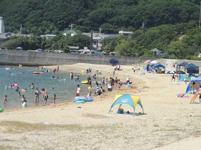 夏休みに海水浴や磯遊び