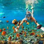 泳げなくても大丈夫!水中の美しさを気軽に体感できるシュノーケリングの魅力とは