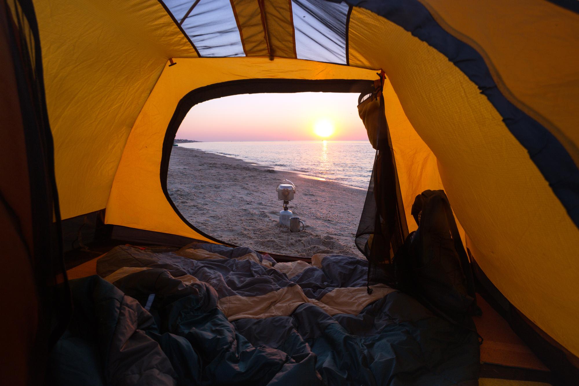 海辺に出没する害虫に要注意!海辺のキャンプでは虫除け対策を万全に