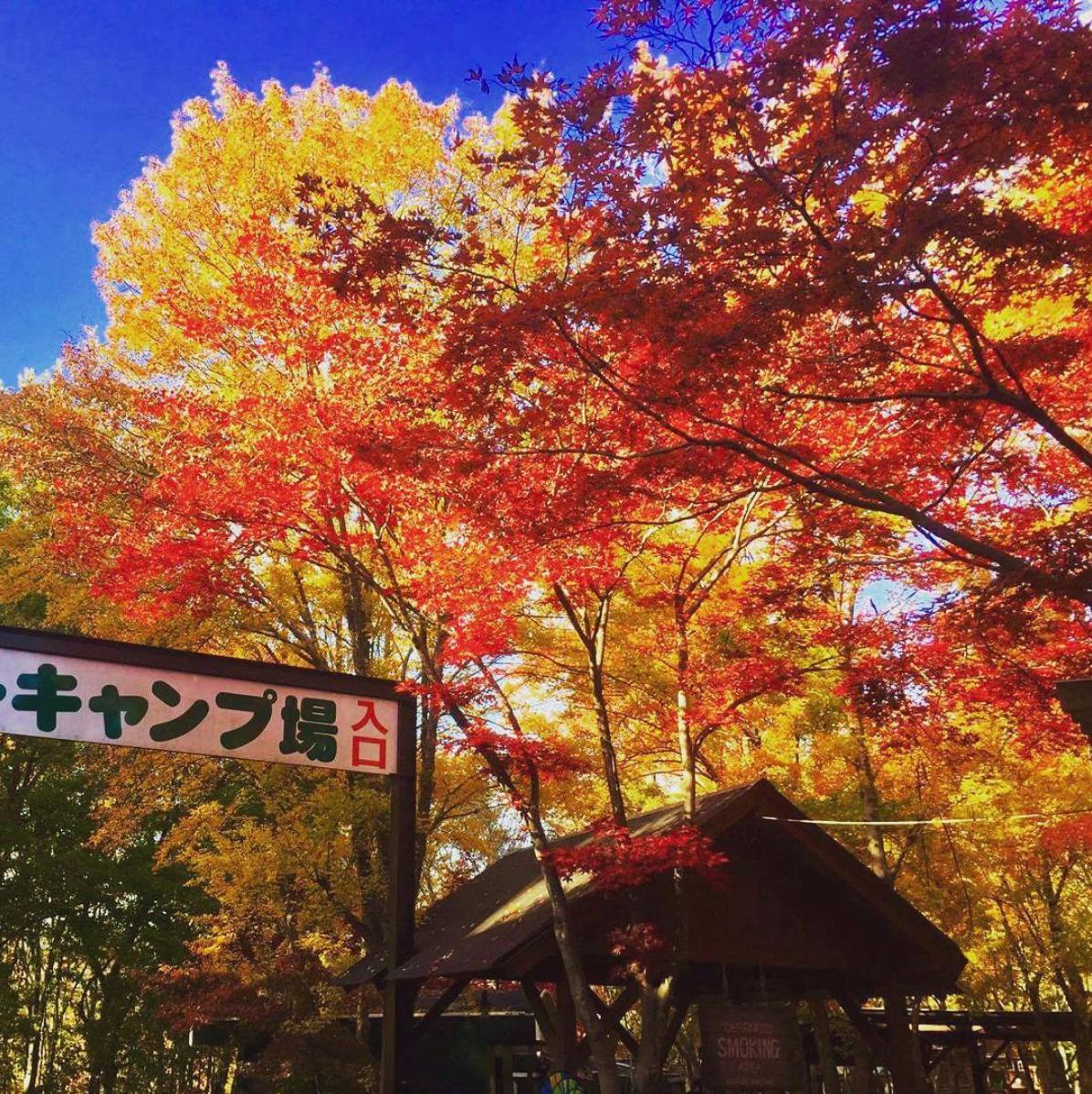 紅葉が綺麗なキャンプ場【関東・甲信越編】