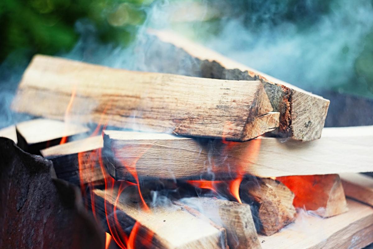 【焚き火のギモン】薪の種類によって燃え方はどう違う?どう使い分ける?