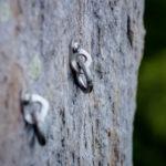自然の岩壁に設置されている金具は安全?危険?見極め方は?