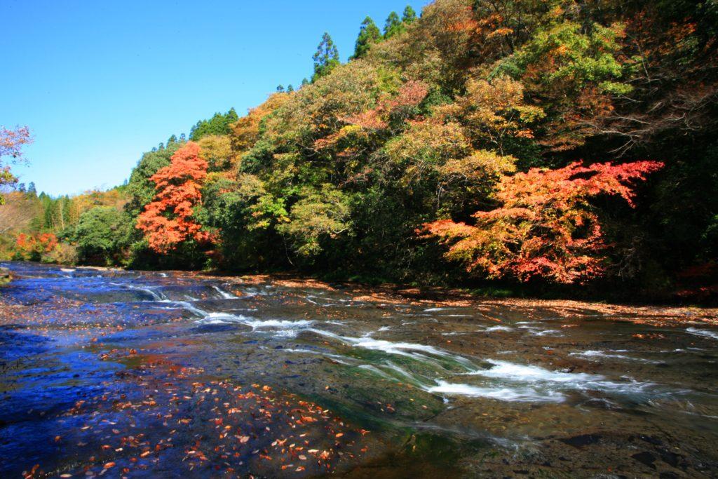 紅葉が綺麗なキャンプ場 四国・九州