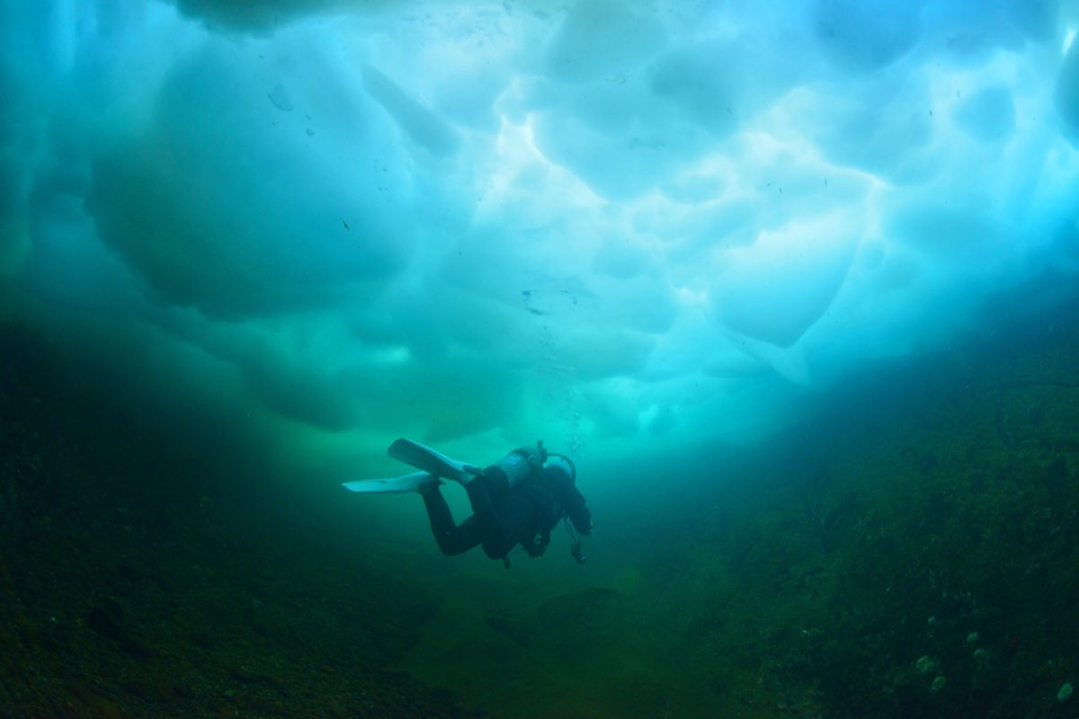 冬の海はドライスーツでダイビング!ドライスーツの正しい使い方