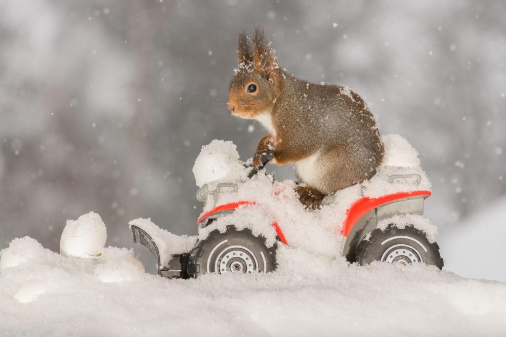 レンタカーで冬の北海道旅行