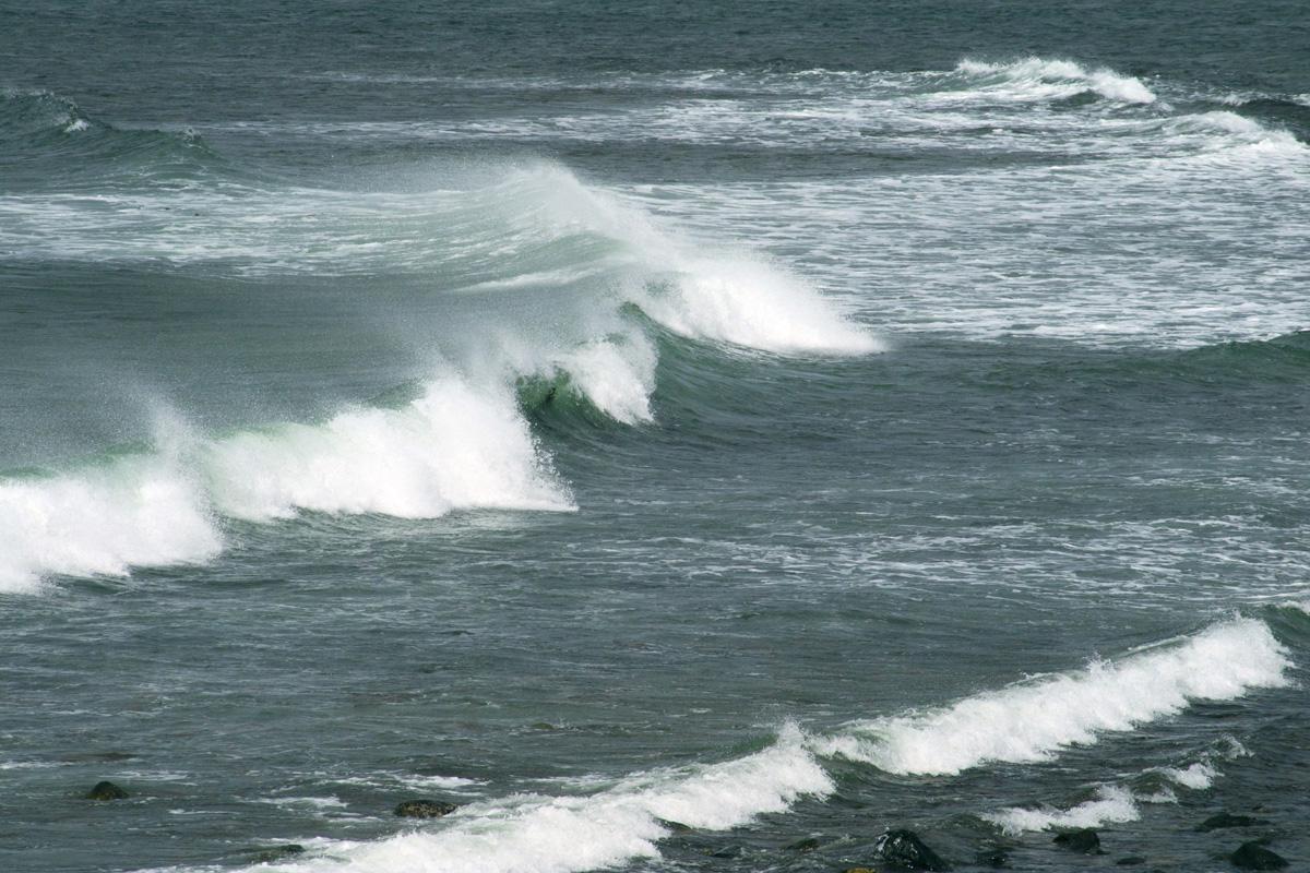 波とうねりの違い