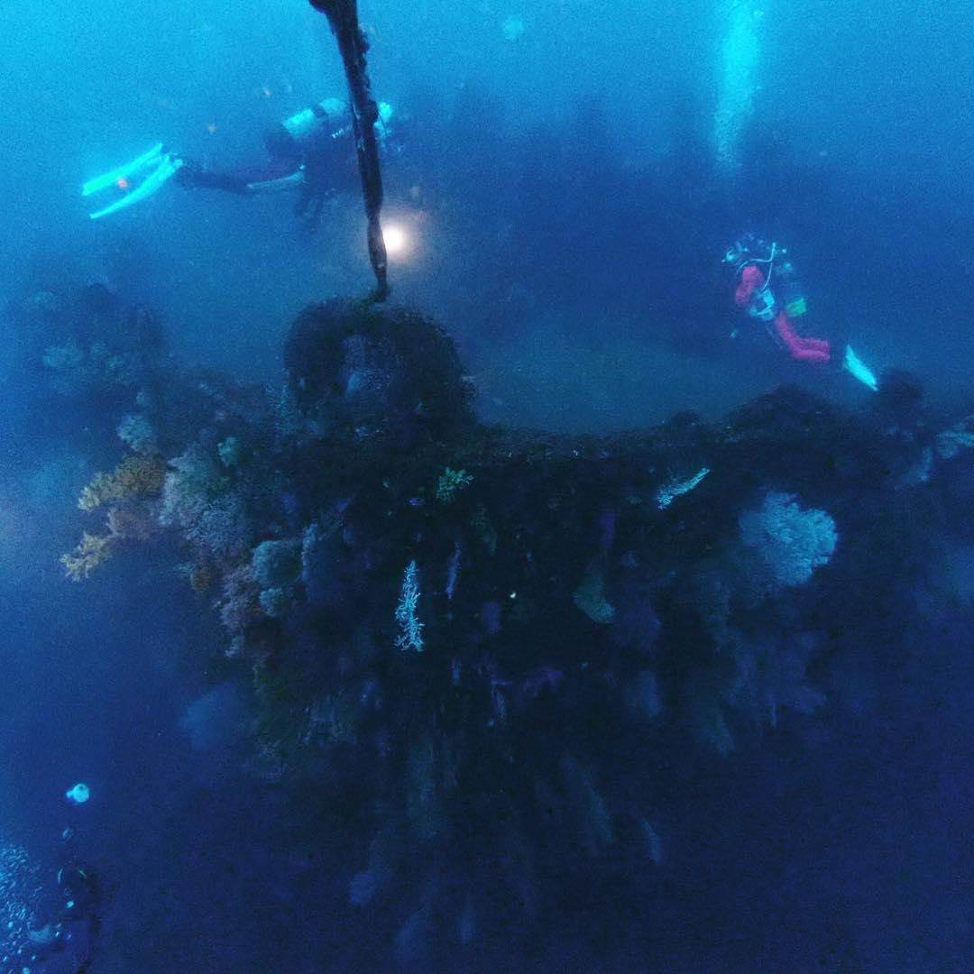熱海ダイビング
