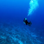 これぞ沖縄の海!久米島は一年中がダイビングのベストシーズン♪