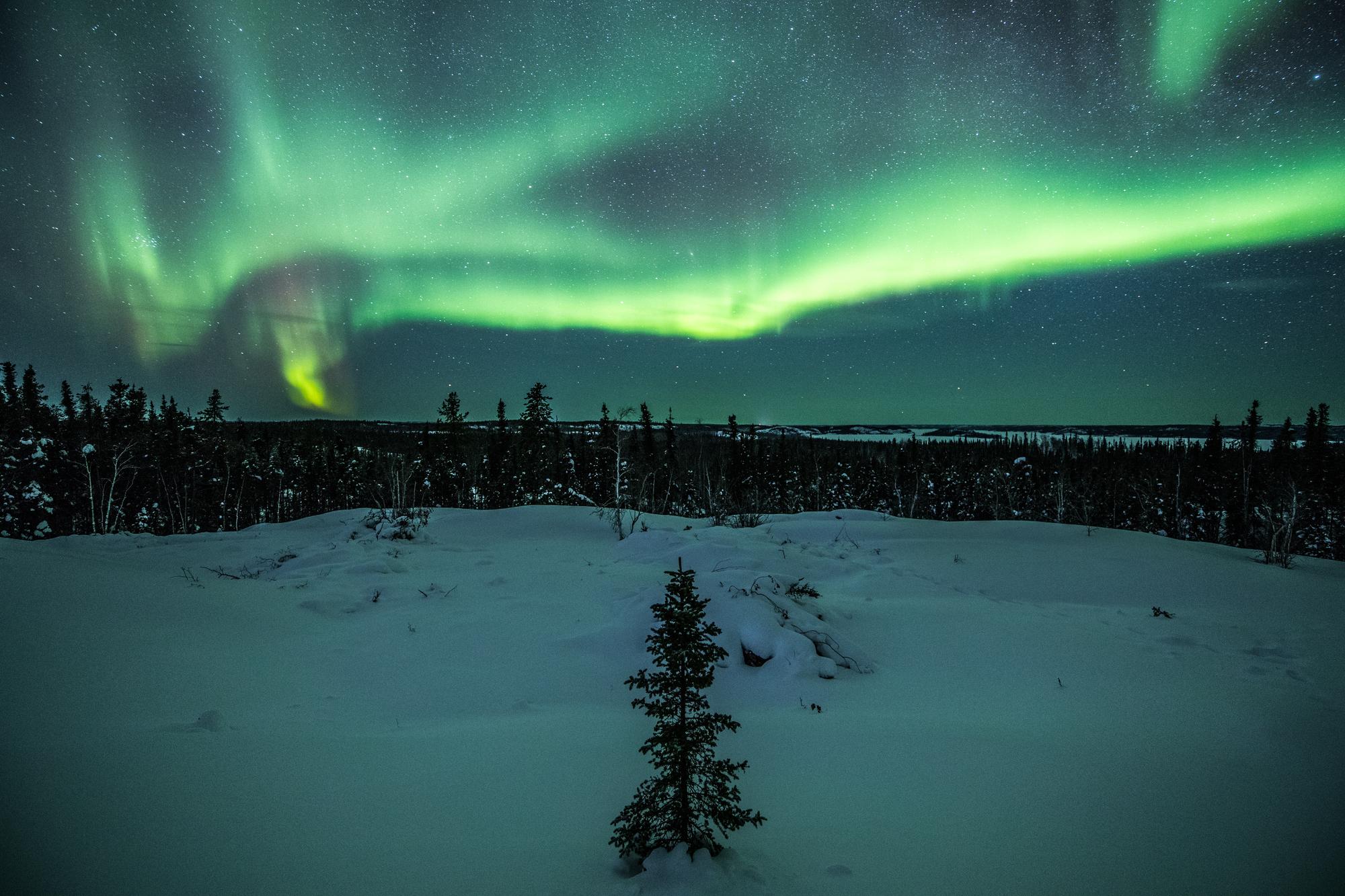 オーロラハンティング・ツアーアイスランドのスノーモービル・ツアー