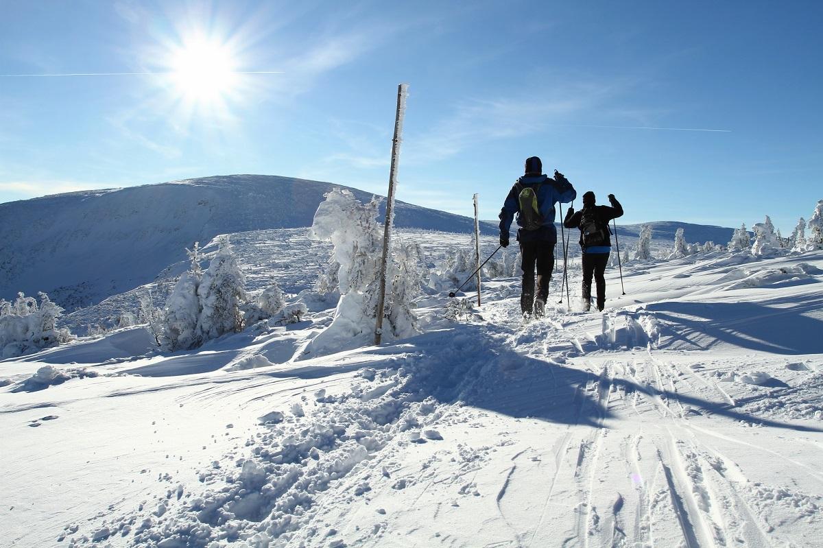 クロスカントリースキーを体験できる場所は?おすすめコースを紹介