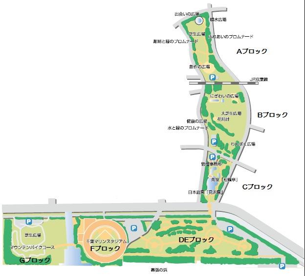幕張海浜公園MTBコース
