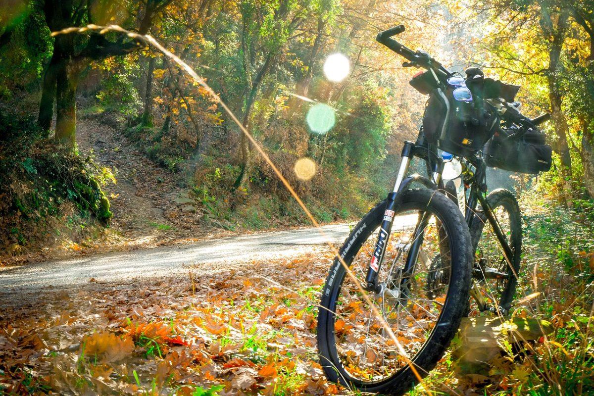 マウンテンバイク乗り心地向上!交換時に注意したいMTB用タイヤの選び方